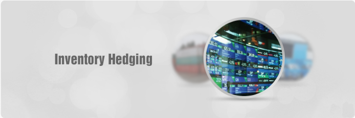 Inventory Hedging for Enterprise Resource Planning